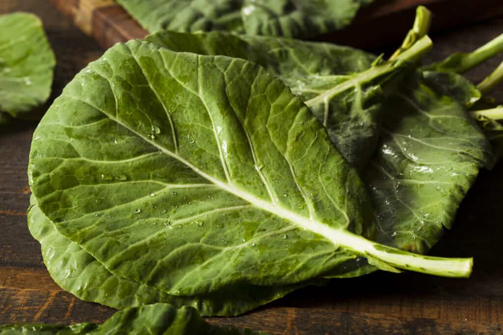 Collard leaves