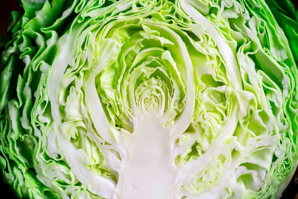 Cabbage halved