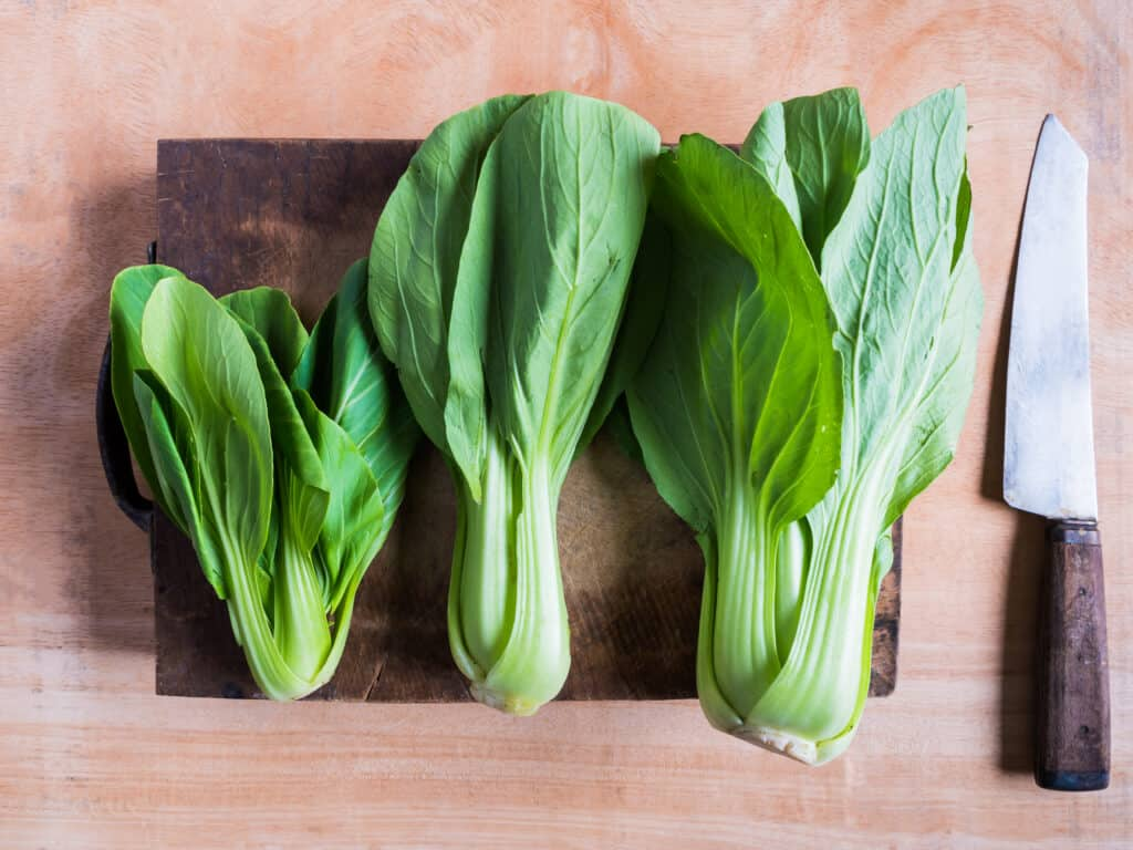 Bok choy in kitchen