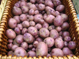 Potatoes purple