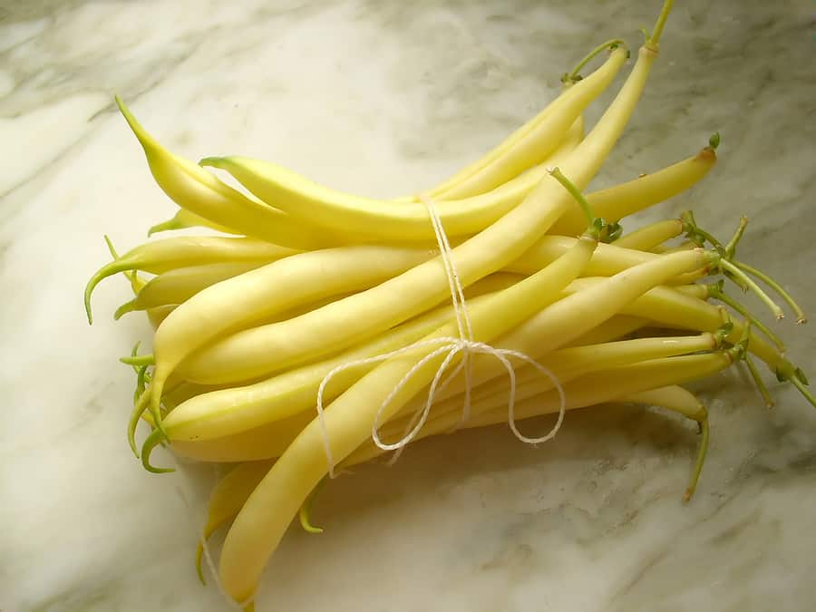 Yellow wax snap beans