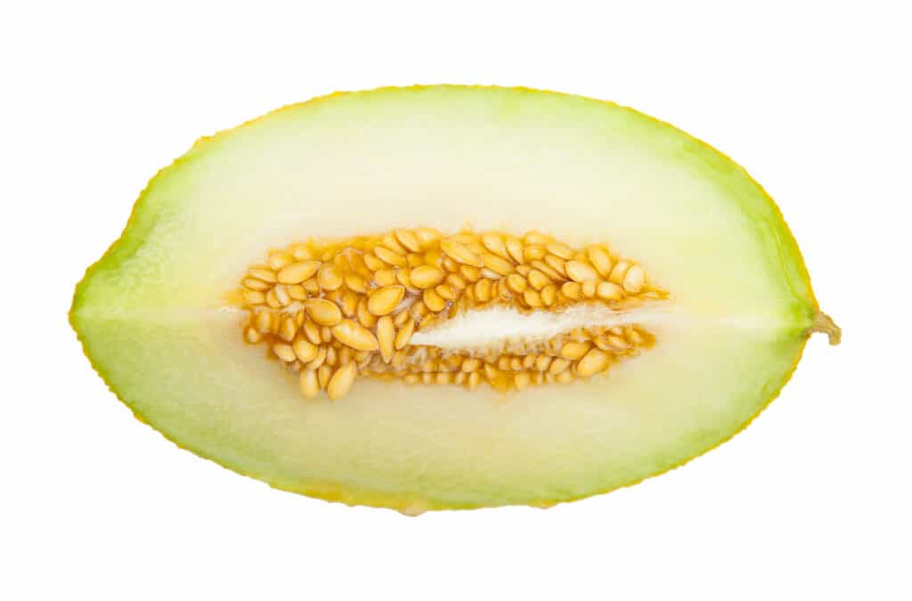Cantaloupe Gas – A ripe cantaloupe will have a sweet smell and the stem end will give.