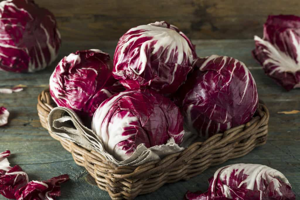 Radicchio in kitchen