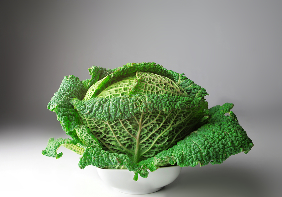 Savoy Cabbage Kitchen Basics Harvest To Table