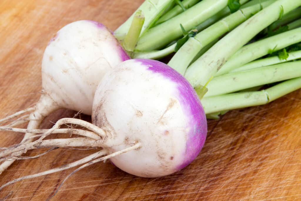 Turnip harvest