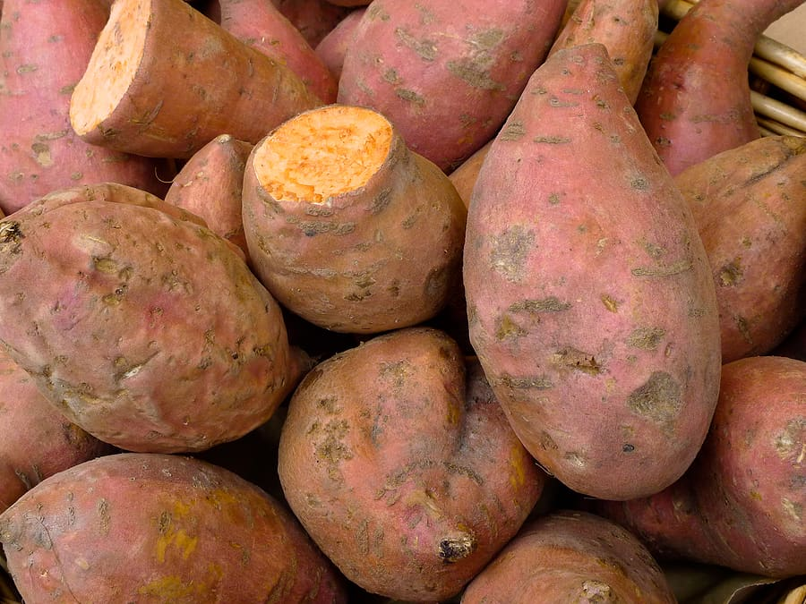 sweet potato tubers