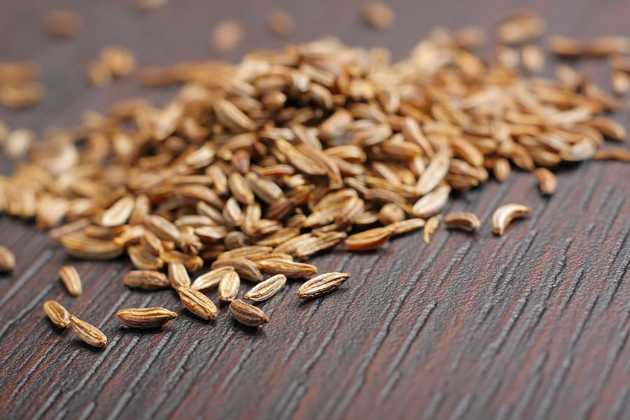 How to grow caraway: caraway seed