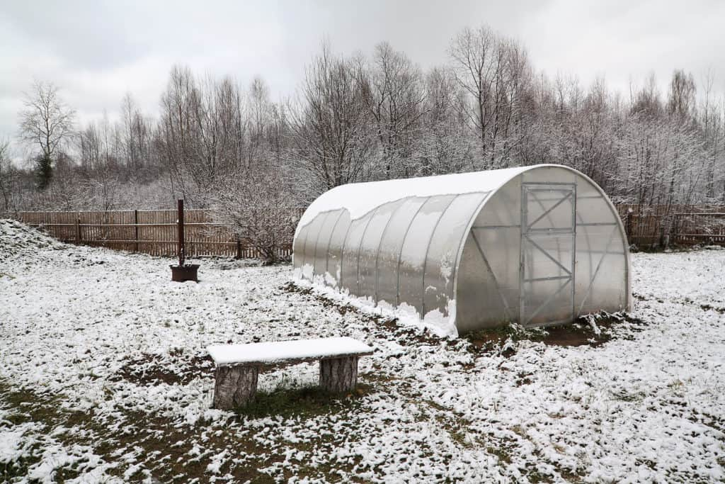 Hoophouse in winter