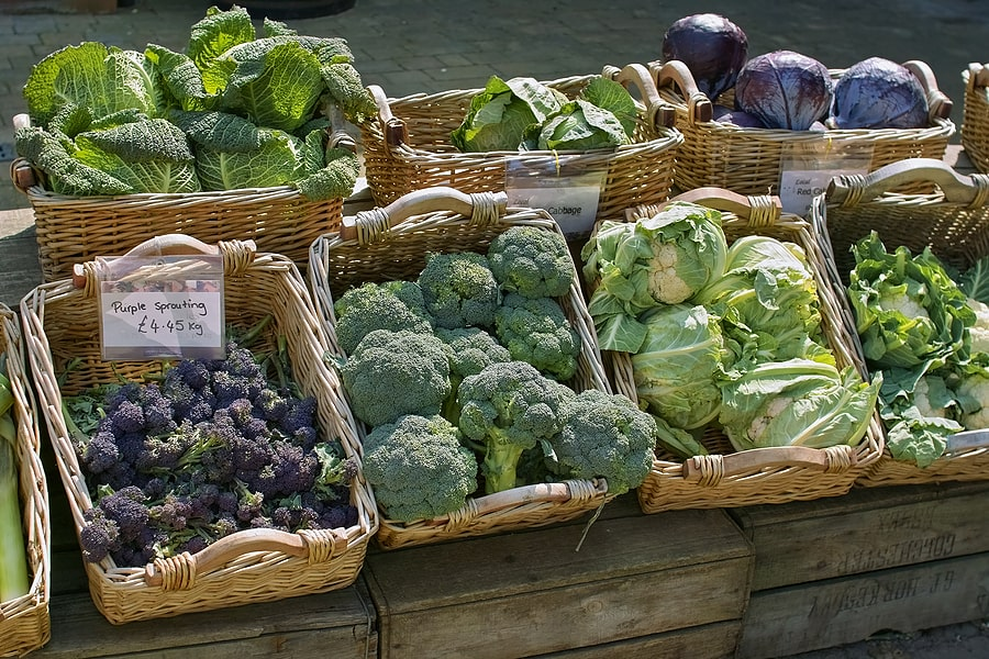 Crops for fall harvest