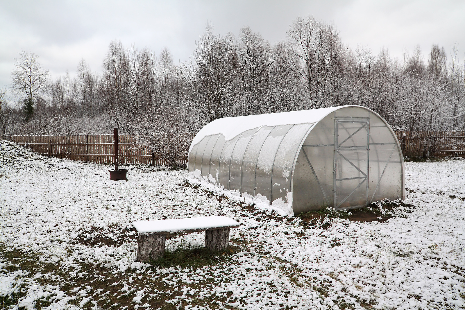 Hothouse in Winter