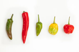How to Choose Hot Peppers--Jalapeno, Thai, Serrano, Habanero, Scotch Bonnet