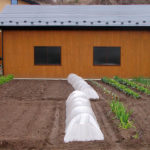 Crop protection with fabric tunnels