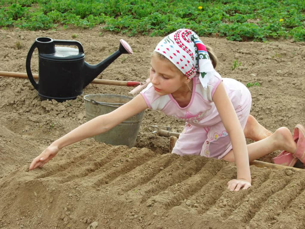 Child's planting bed
